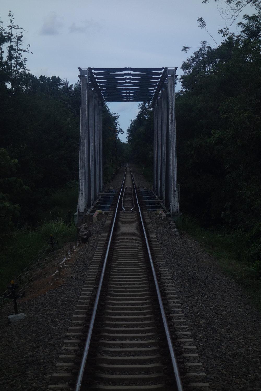 Dschungeleisenbahnbrücke