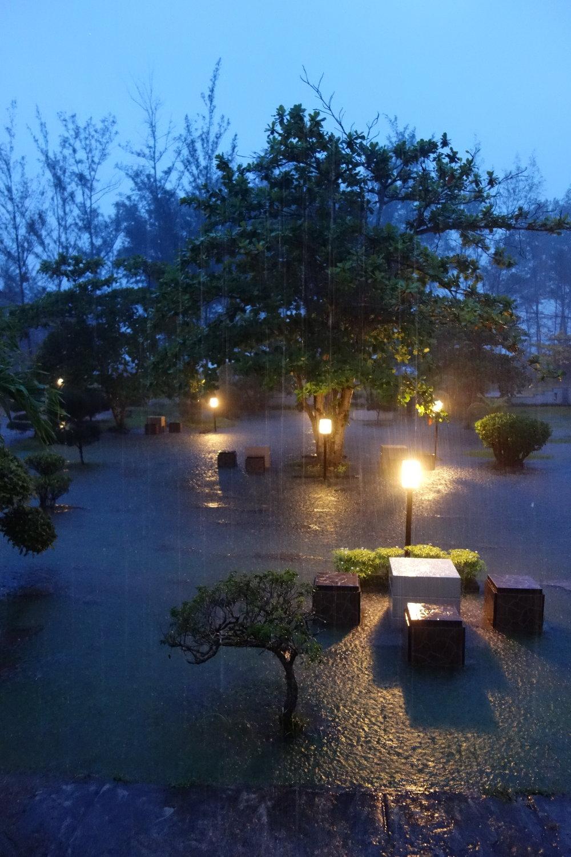 überschwemmter Garten